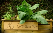 Druid City Garden Project Hosting Build Days for New School Gardens
