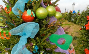 Tinsel Trail is coming: Grand Opening is Tonight